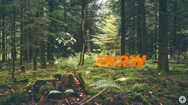 ENRW - Logo steht im Wald